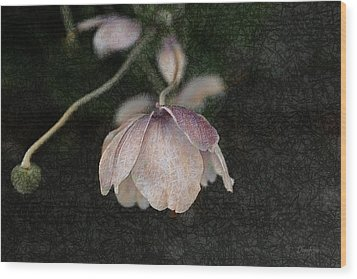 Pink Flower Wood Print by   DonaRose