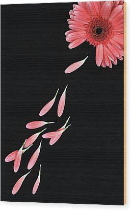 Pink Flower With Petals Wood Print by Photo by Bhaskar Dutta