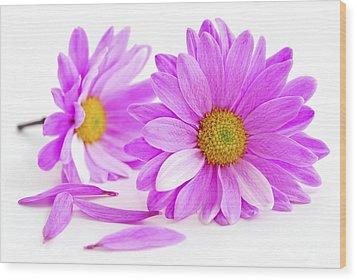 Pink Flowers Wood Print by Elena Elisseeva