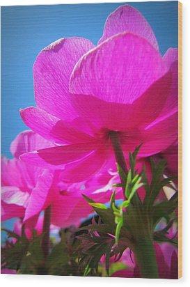 Pink Flowers In The Sky Wood Print by Eva Kondzialkiewicz