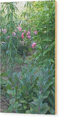 Pink Garden Flowers Wood Print by Thelma Harcum
