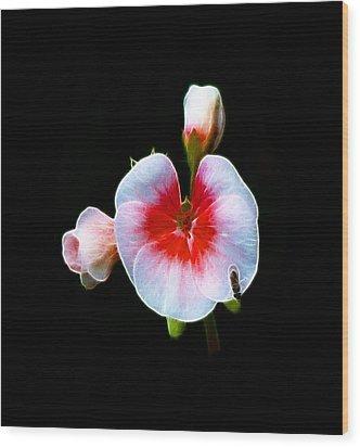 Wood Print featuring the photograph Pink Geranium by Lynn Bolt