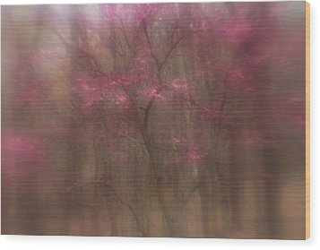 Pink Haze Wood Print by Coby Cooper