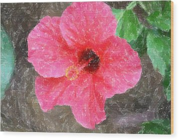 Wood Print featuring the photograph Pink Hibiscus by Donna  Smith