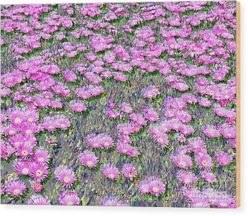 Pink Ice Plant Flowers Wood Print