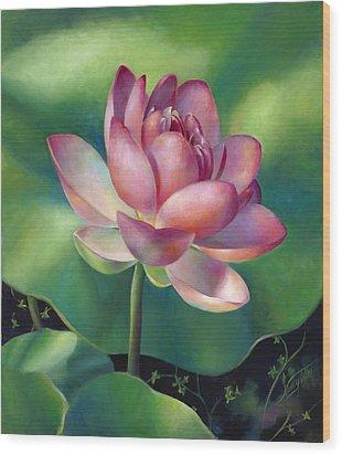 Pink Lotus Water Lily Wood Print by Nancy Tilles