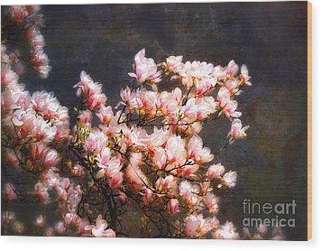 Pink Magnolias Wood Print by Elaine Manley