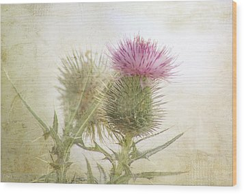 Pink On Green Wood Print by Margaret Hormann Bfa