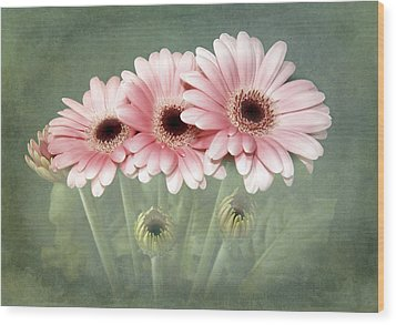 Pink On Green Wood Print by Fiona Messenger