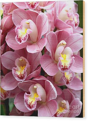 Wood Print featuring the photograph Pink Orchids by Debbie Hart