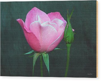 Wood Print featuring the photograph Pink Rose by George Bostian