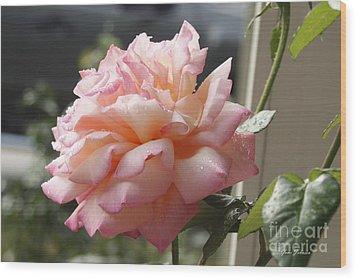 Pink Rose  Wood Print by Yumi Johnson