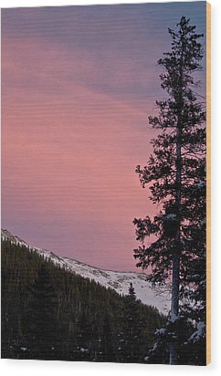 Pink Sunset Wood Print by Lisa  Spencer