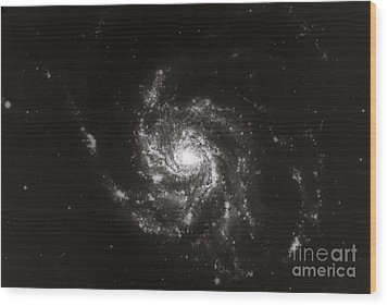 Pinwheel Galaxy, M101 Wood Print by Science Source