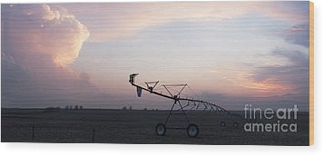 Pivot Irrigation And Sunset Wood Print