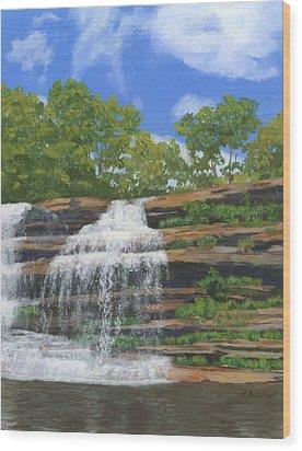 Pixley Falls Wood Print by Lynne Reichhart