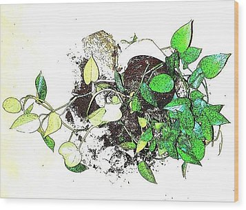 Wood Print featuring the mixed media Plant Falls by YoMamaBird Rhonda