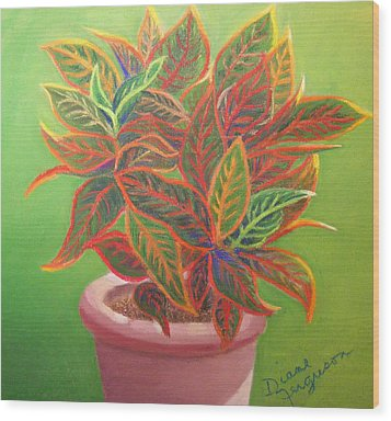 Plant Portrait II Wood Print by Diane Ferguson