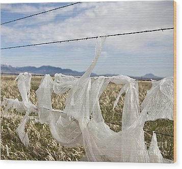 Plastic Garbage Bag On A Wire Fence Wood Print by Paul Edmondson