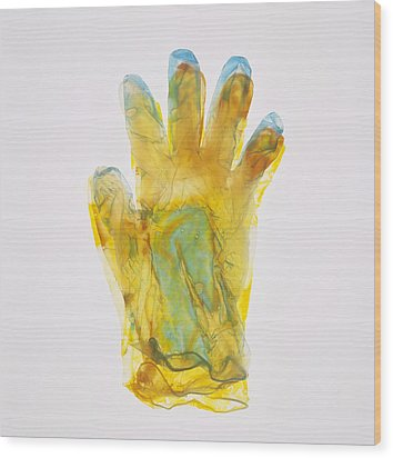 Plastic Glove Wood Print by Kevin Curtis
