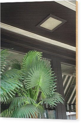 Wood Print featuring the photograph Plastic Palms And Striped Awnings by Louis Nugent