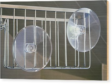 Plastic Suction Cups Wood Print by Sheila Terry