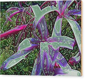 Plasticized Cape Lily Digital Art Wood Print by Merton Allen
