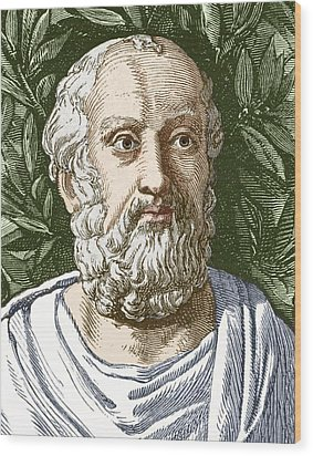 Plato, Ancient Greek Philosopher Wood Print by Sheila Terry