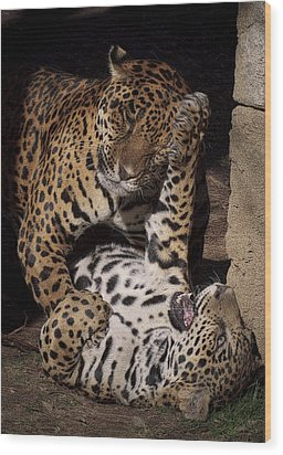 Wood Print featuring the photograph Play Time by Cheri McEachin