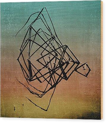 Playback Wood Print by Bonnie Bruno