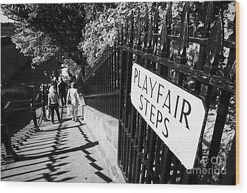 Playfair Steps Down Into Princes Street Gardens Edinburgh Scotland Uk United Kingdom Wood Print by Joe Fox