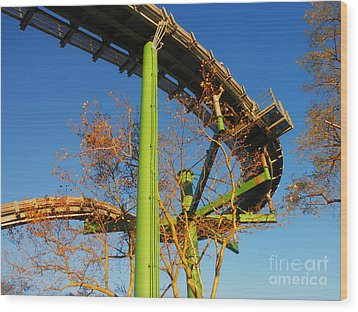 Wood Print featuring the photograph Playland II by David Klaboe