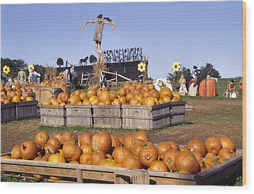 Plenty Of Pumpkins Wood Print by Sally Weigand