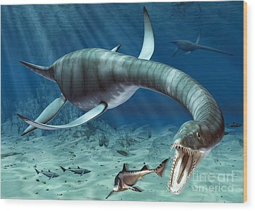 Plesiosaur Attack Wood Print by Roger Harris and Photo Researchers