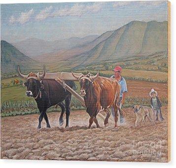 Ploughing In Ocotlan Wood Print by Judith Zur