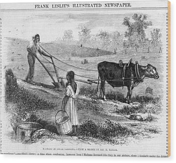 Plowing In South Carolina.  African Wood Print by Everett