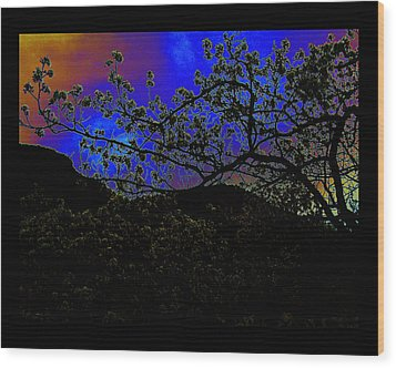 Wood Print featuring the photograph Plum Grove At Dusk by Susanne Still
