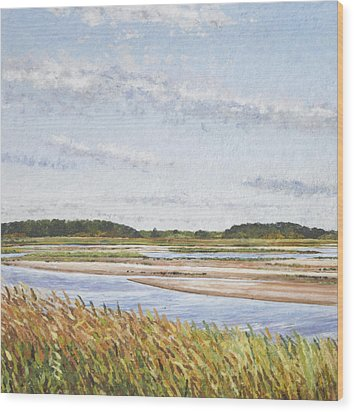 Plum Island Morning Wood Print by Meg Black