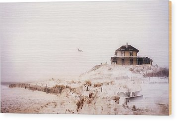 Plum Island Winter Wood Print