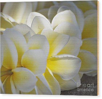 Plumeria Flower Lei Wood Print by Loriannah Hespe