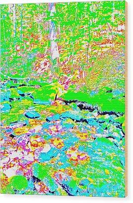 Poetic Brook 12 Wood Print