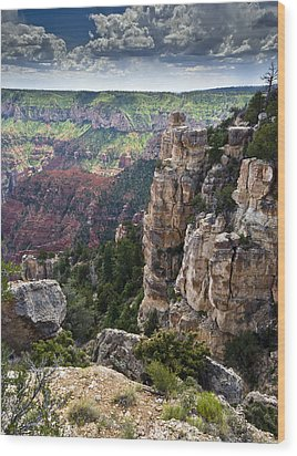 Point Imperial Cliffs Grand Canyon Wood Print by Gary Eason
