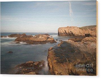Point Lobos Number Three Wood Print by Catherine Lau
