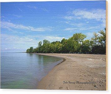 Point Pelee Beach Wood Print