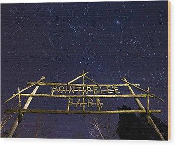 Point Pelee Under The Stars Wood Print by Cale Best