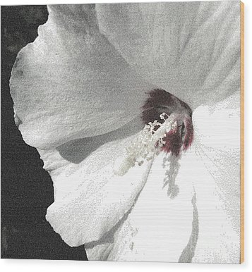 Pointillized Althea Flower Wood Print by Renee Trenholm