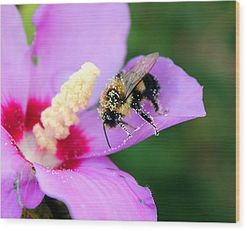Wood Print featuring the photograph Pollen Sprinkles by Laurinda Bowling