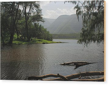 Wood Print featuring the photograph Pololu Valley Off Awini Trail by Scott Rackers