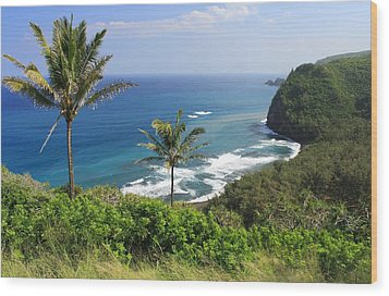 Wood Print featuring the photograph Pololu Valley by Scott Rackers