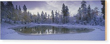 Pond And Fresh Snowfall, Near 70 Mile Wood Print by David Nunuk